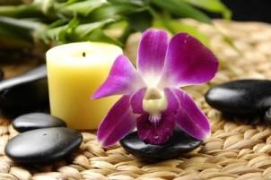 Прочесть все отзывы о курсах обучения массажистов (массажу)