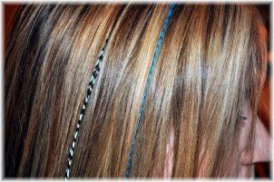 Учебные центры наращиванию волос СПб