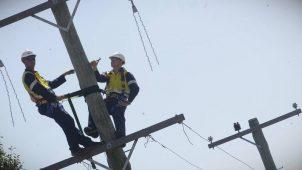 Полная информация об академиях электриков